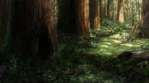 Forest by Wildforge