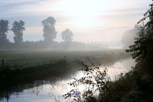 Morgenwandeling 1 by Dewfooter