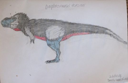 Daspletosaurus torosus by Tim64