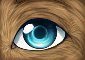 Wolf Eye by Renkat