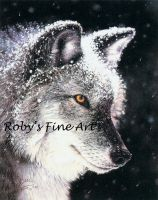 'Eye of the Storm' - Realism by robybaer