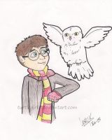 Harry and Hedwig by Turtlegirl5