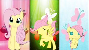 3 Fluttershy's by Mr-Kennedy92