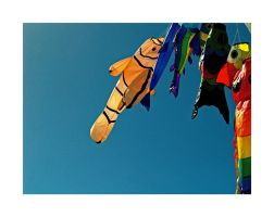 kites by damo3sp