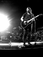 foo fighters vi by leishmo