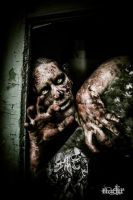 Zombie 2 by cromatic-blood