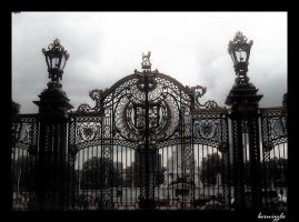 Iron-Wrought Gate in London by bernizzle