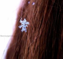 Last Snowflake by Nataschaa