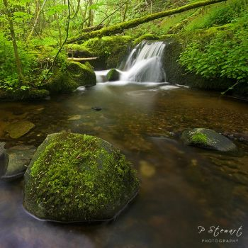 Muckhart Mill by FlippinPhil