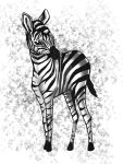 Zebra! by FairlyOddChick91