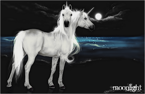 .:Moonlight:. by WhiteSpiritWolf