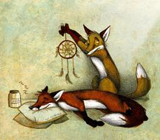 Dreamcatching By Culpeo Fox-d47wge3 by MissWolf10