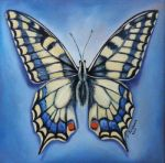 Butterfly gift 1 by SamanthaJordaan