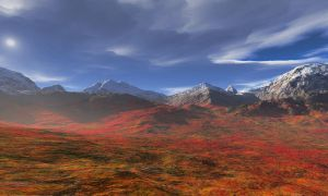 Tundra Autumn by starfire777