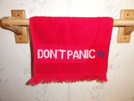 Hitchhikers towel by Sew-Madd