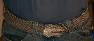 Dragonscale Belt 2 by Chaosity347