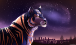 Midnight City by Spottedfire23