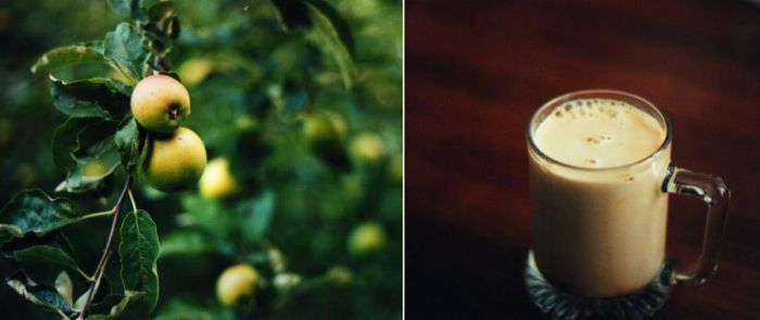 apple tree and ice coffee by kitleen