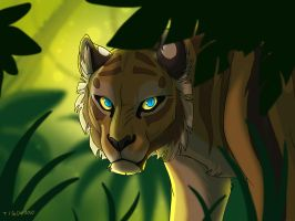 Another tigon by tigon