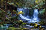 Tasmanian Waterfall by Fueled-By-Freedom