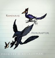 Microraptor and Rahonavis by FredtheDinosaurman