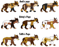 9 Pups to =Kaes-Loveable-Adopts by MichelsAdoptions