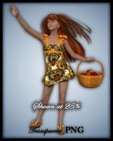 Harvest Girl-Figure Stock by shd-stock
