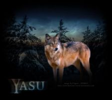 Yasu by thefigureouter