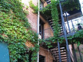 Ivy Building by abuseofstock