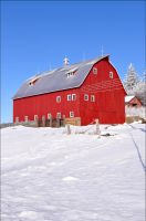 Red Barn in Winter Vert by bacardi870