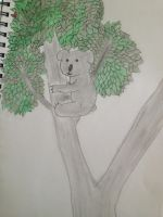 Koala in a Tree by Necrophilliacness