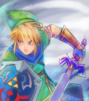 Hyrule Warriors - Unfinished Link by xFennek