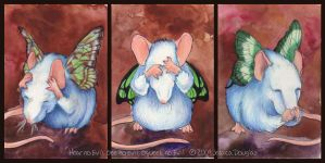 Hear, See, Squeek no evil by JessicaDouglas