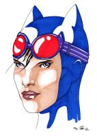 Catwoman in blue by emalterre