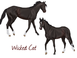 Wicked Cat by SageSinRiddle