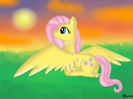 fluttershy meets the sunset by ByVikaWorks