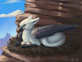Nesting griffin by NetRaptor