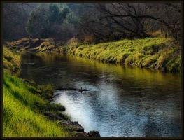 river bank by ariseandrejoice