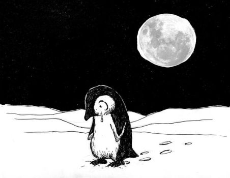 Lonely penguin no.1 by Hoed