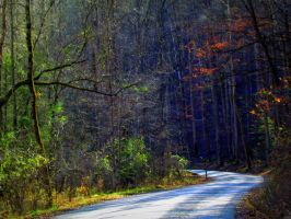 A Road Less Traveled by RealityIntolerant