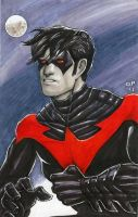 Nightwing! by olybear