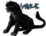 Vale by forstyy