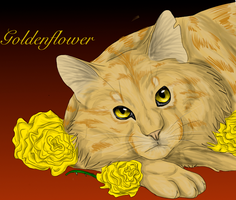 Goldenflower-Someone Like You by FirehCat