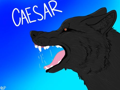 Caesar by misrable
