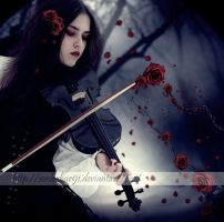 -red rose- by TuubArt