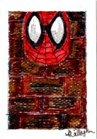 Spider-man by Anthony-Callaghan