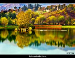 Autumn Reflections by Marcello-Paoli