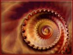 A Perfect Spiral by Beesknees67