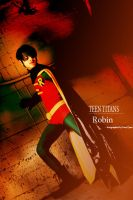 Robin by qcamera