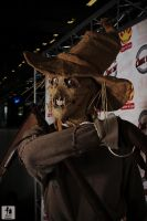 Scarecrow Cosplay by Boredman